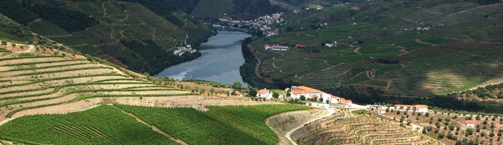 cropped-Douro-liten.jpeg