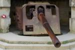 Gun cropped