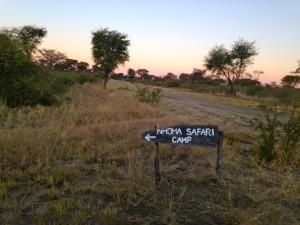 Bushmen Nhoma